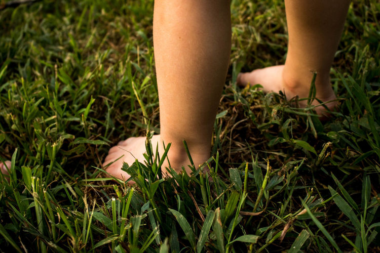 barefoot Child Grass Growth Nature One Person Outdoors Outside Plant