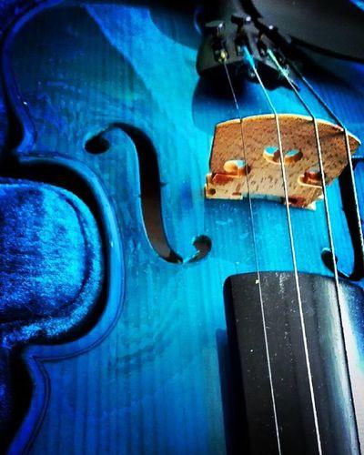9vaga_colorblue9 Violin Instrument Music Classicalmusic Blueviolin Aston Stringinstrument Tv_simplicity Minimalgram Minimal_mood Minimal_int