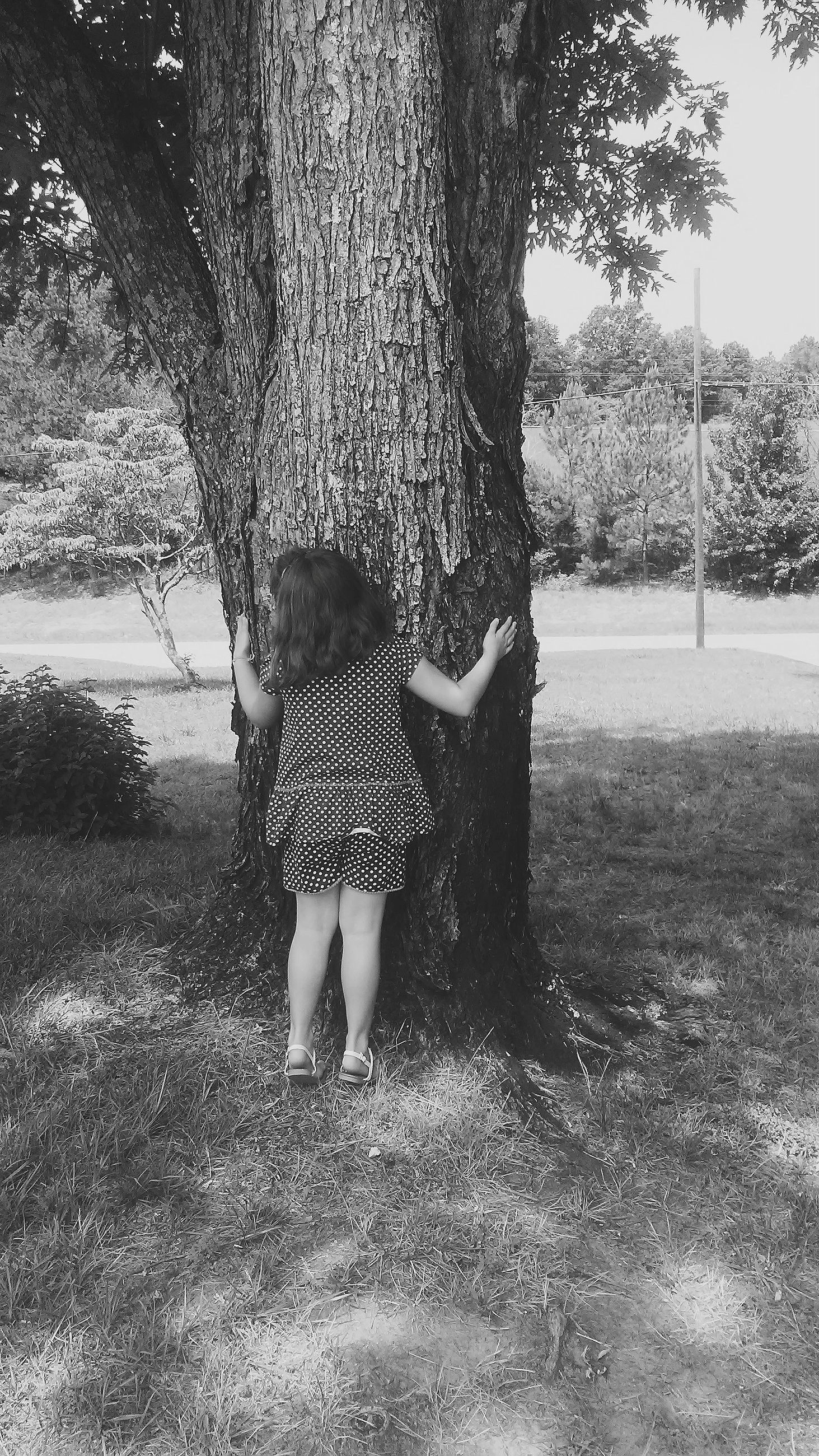 tree, tree trunk, real people, rear view, growth, leisure activity, childhood, day, full length, girls, nature, lifestyles, field, outdoors, standing, grass, hugging, beauty in nature, branch, people