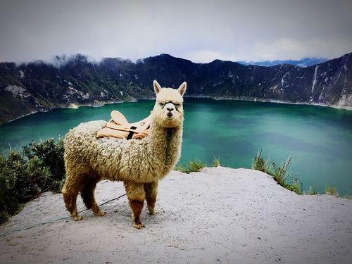 Quilotoa Lake Ecuador♥ Nature Beauty In Nature No People First Eyeem Photo EyeEmNewHere