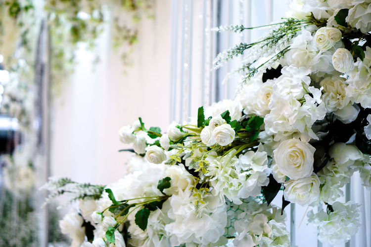 Flower Flowering Plant Plant White Color Beauty In Nature Flower Arrangement Freshness Bouquet Nature Vulnerability  Fragility Flower Head Close-up No People White Rose - Flower Beutiful  Wedding Love Happy Sweet
