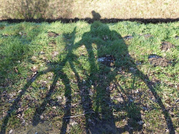 😆fun in the sun To Cheer You Up  To Cheer Me Up😎 Sooo Cold!! Sun In Winter..😍😍😍 Sunny Winterday I Feel Great😂 Think Big Dream Big Shadowselfies My Shadow And Me For My Friends😚 Funshot Shadow High Angle View Sunlight Outdoors No People Go Higher