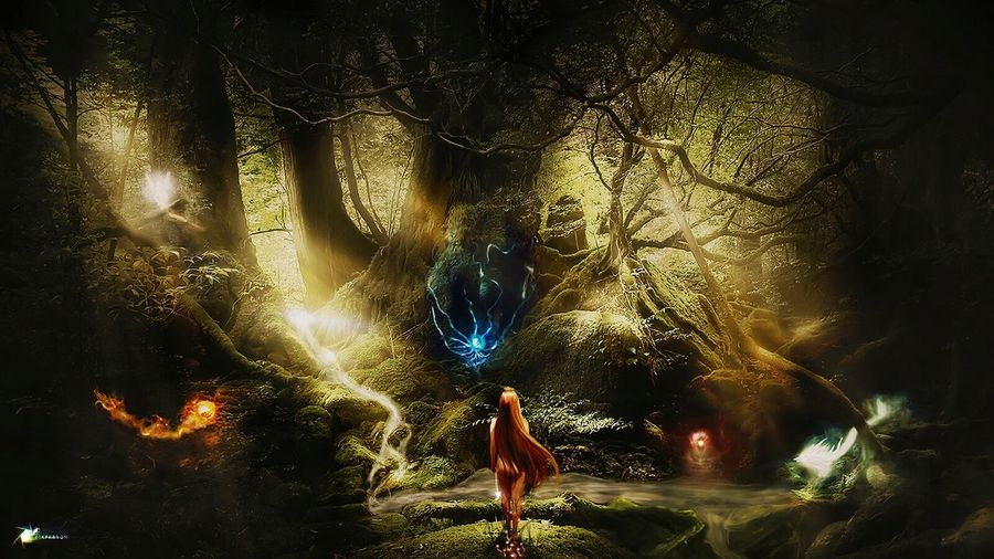 The Magical forest. My last digital painting combining photography and painting with wacom. Forest Inthewoods Elf Fantasy Fair Elf Enviroment Woman Painting Digital Art Photoshop