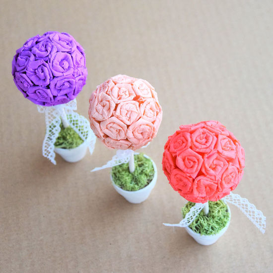 Close-up Flower Freshness Indoors  Nature Pastel Colors Rose - Flower Rose Tree Topiary