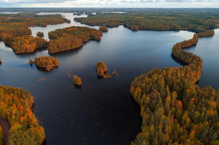 Aerial view from Liesjärvi National Park on an autumn afternoon with sun starting to go down, Finland Autumn Autumn colors Finland Liesjärvi National Park Beauty In Nature Day High Angle View Lake Nature No People Non-urban Scene Outdoors Scenics - Nature Tranquility Tree Water