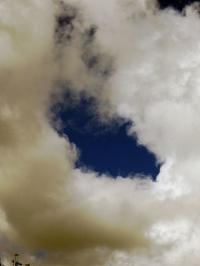 Hole In The Sky Backgrounds Beauty In Nature Cloud - Sky Day Low Angle View Nature No People Outdoors Scenics Sky