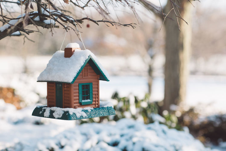 Close-up of birdhouse on tree during winter