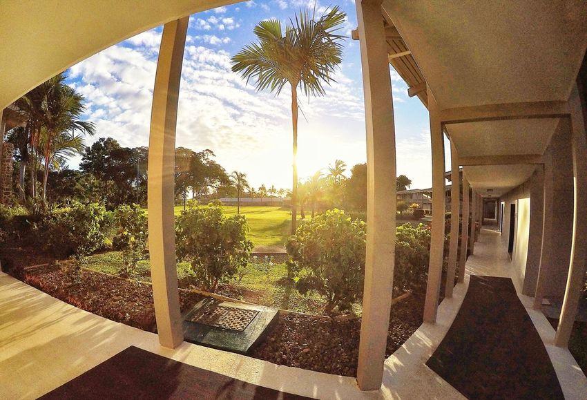 The warm rays of the evening sunset... Fiji Tropical Relaxing GoPro Hero 4 EyeEm Best Edits Sunset Travel