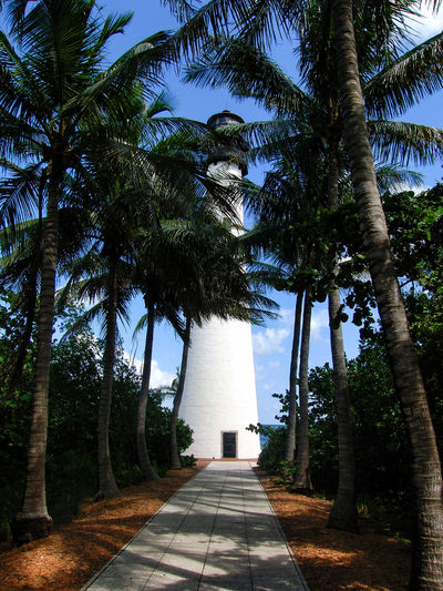 Key Biscayne Love Miami Buildings & Sky Buildings Architecture Florida Happy Day Key Biscayne Lighthouse