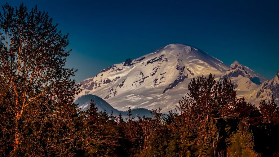 Mt. Baker Washington Sky Mountain Plant Tree Beauty In Nature Winter Scenics - Nature Snow Tranquility Snowcapped Mountain Tranquil Scene Nature No People Clear Sky Blue Non-urban Scene Environment Mountain Range Outdoors