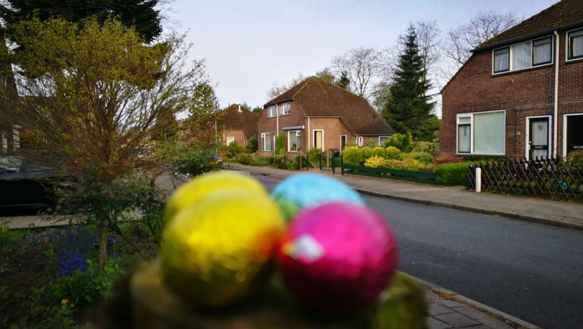 House Building Exterior Architecture Built Structure Tree Multi Colored Easteregg Outdoors Day No People Sky