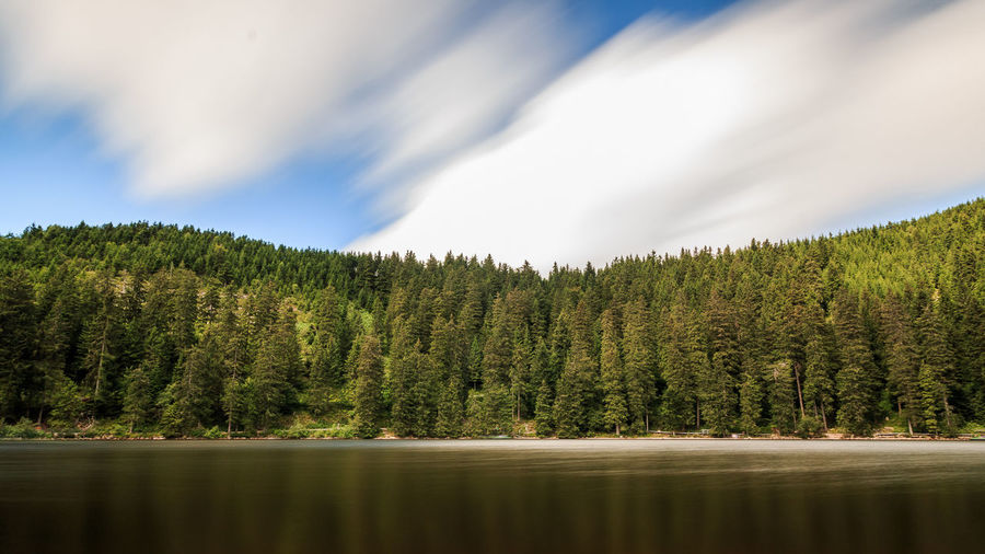 Lake and trees against cloudy sky