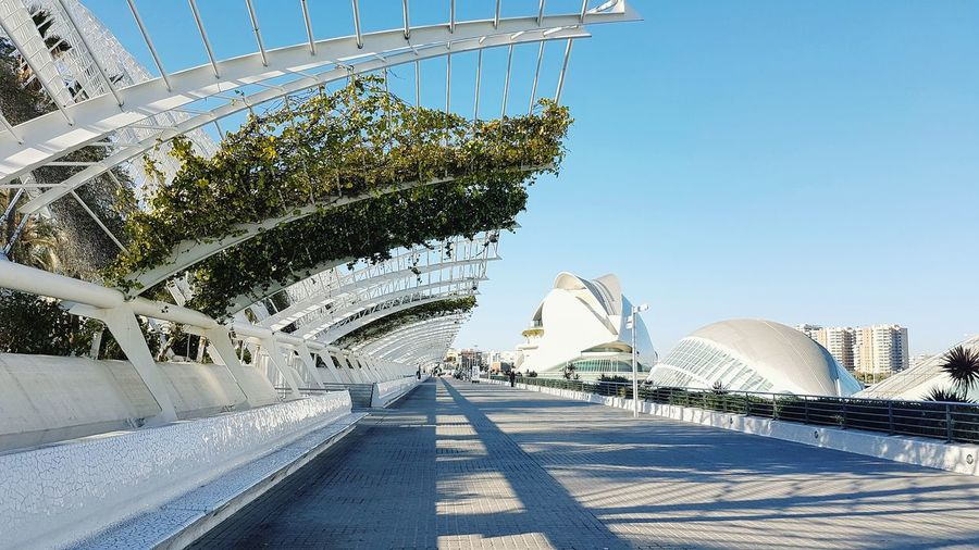 City Of Arts And Sciences Walkable City Day Sky Outdoors Architecture Clear Sky No People