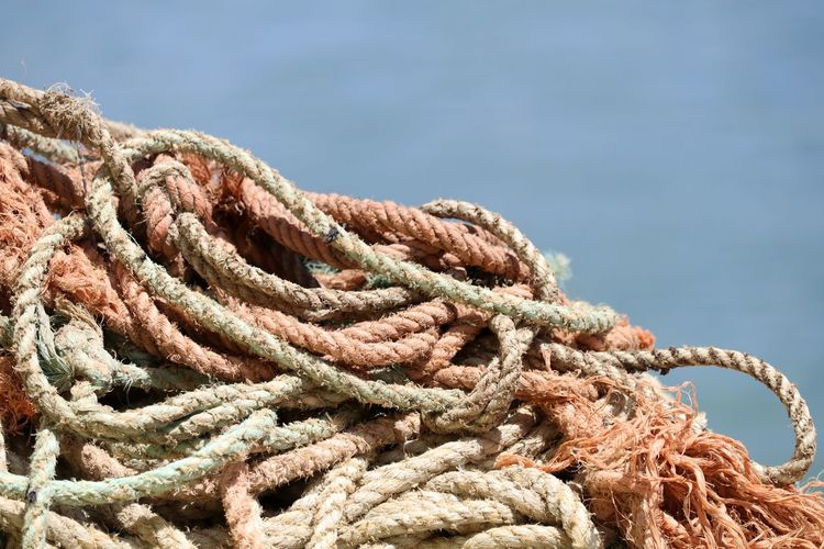 Close-up of ropes at harbor