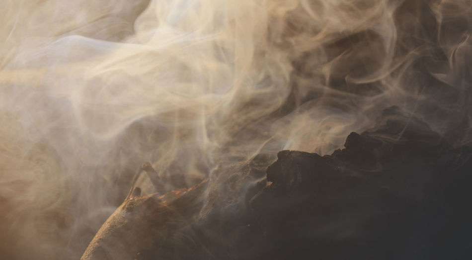 Close-up of smoke on rock