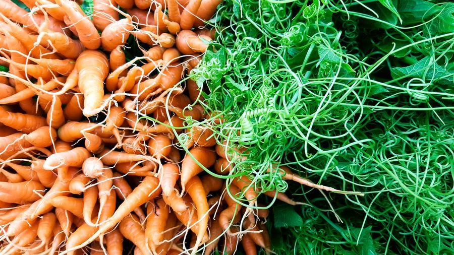 Baby carrot with green vegitable Baby Carrots Green Vegitable Background Market