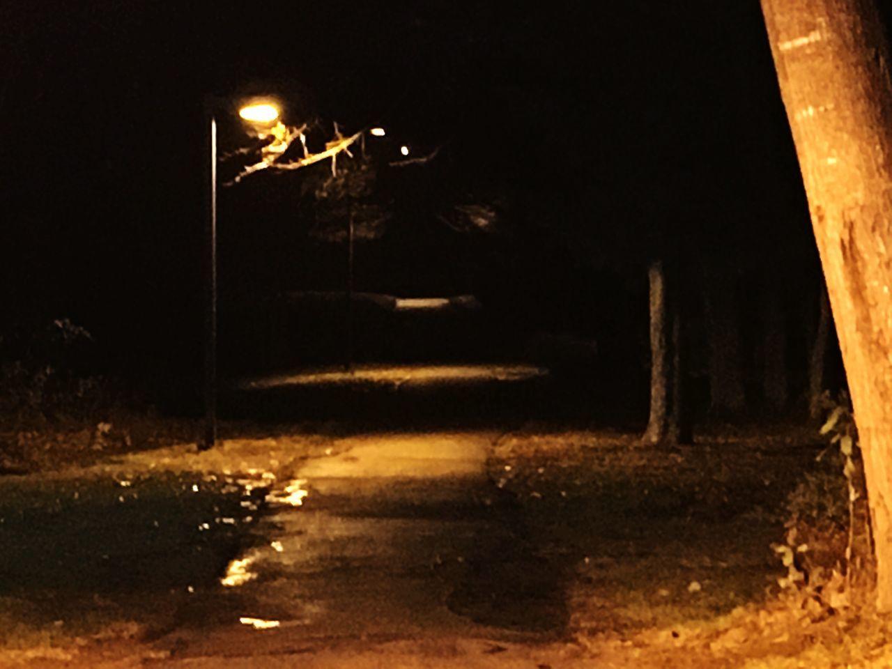 night, illuminated, dark, no people, outdoors, moon, flying, nature