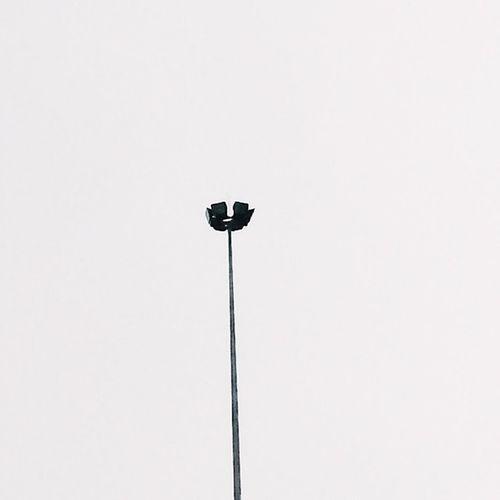 ~You'll Never Stand Alone~ Solitude Minimalist Minimalism Infinity Skyiswhite RainyDay Whitewhatever Sundays Justgoshoot Nothingisordinary Neverstopexploring  Killereverygram Fartoodope Shoot2kill
