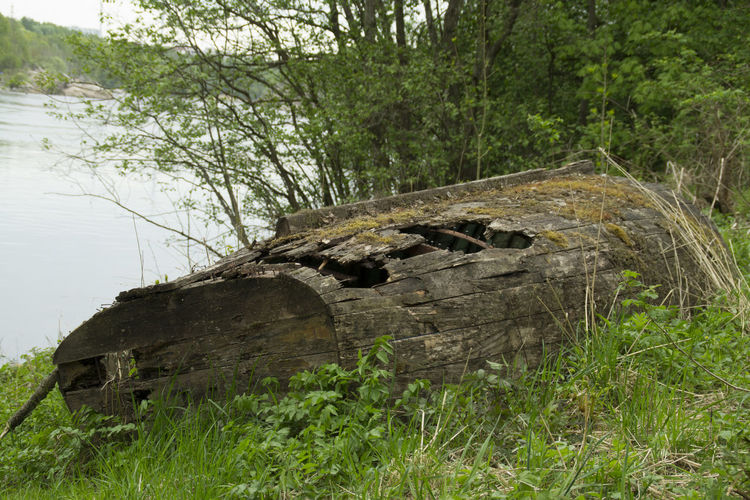 Beauty In Nature Boat Day Deterioration Field Grass Grassy Green Green Color Growth Landscape Nature No People Non Urban Scene Non-urban Scene Old Old Boat Outdoors Plant Run-down Rural Scene Scenics Tranquil Scene The Great Outdoors - 2016 EyeEm Awards
