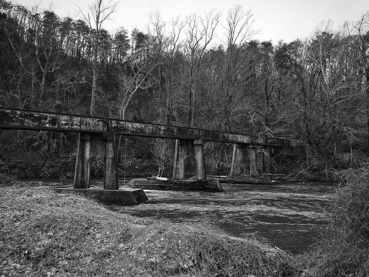 Architecture Black Bridge Bridge - Man Made Structure Built Structure Connection Day Growth Landscape Nature No People Outdoors River Sky Transportation Tree Water EyeEmNewHere