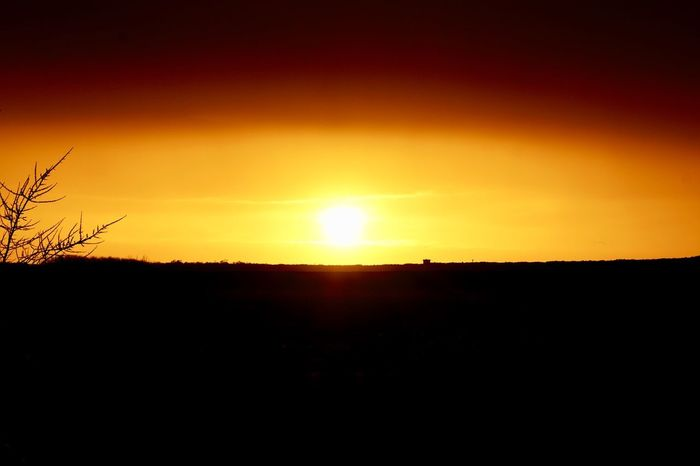 Sunset Sky Silhouette Beauty In Nature Scenics - Nature Orange Color Tranquility No People Nature Landscape Copy Space Tranquil Scene Environment Non-urban Scene Field Sun Sunlight Idyllic Yellow Land
