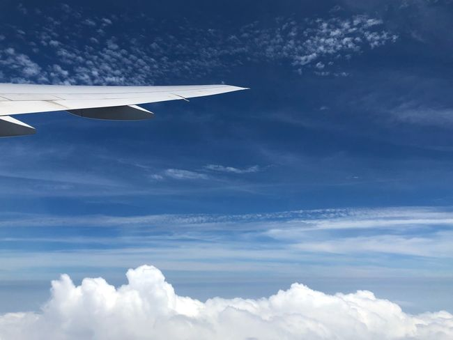Air Vehicle Cloud - Sky Airplane Sky Flying Transportation Mode Of Transportation Aircraft Wing Cloudscape Day Scenics - Nature Travel Mid-air Nature No People Motion Blue Commercial Airplane Beauty In Nature Outdoors