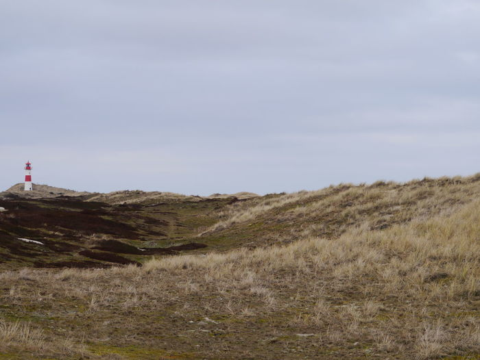 Sylt Sylt, Germany Northsea Ellenbogen, Sylt Sand Dune Sky Landscape Grass Coast Horizon Over Water Beach Sandy Beach