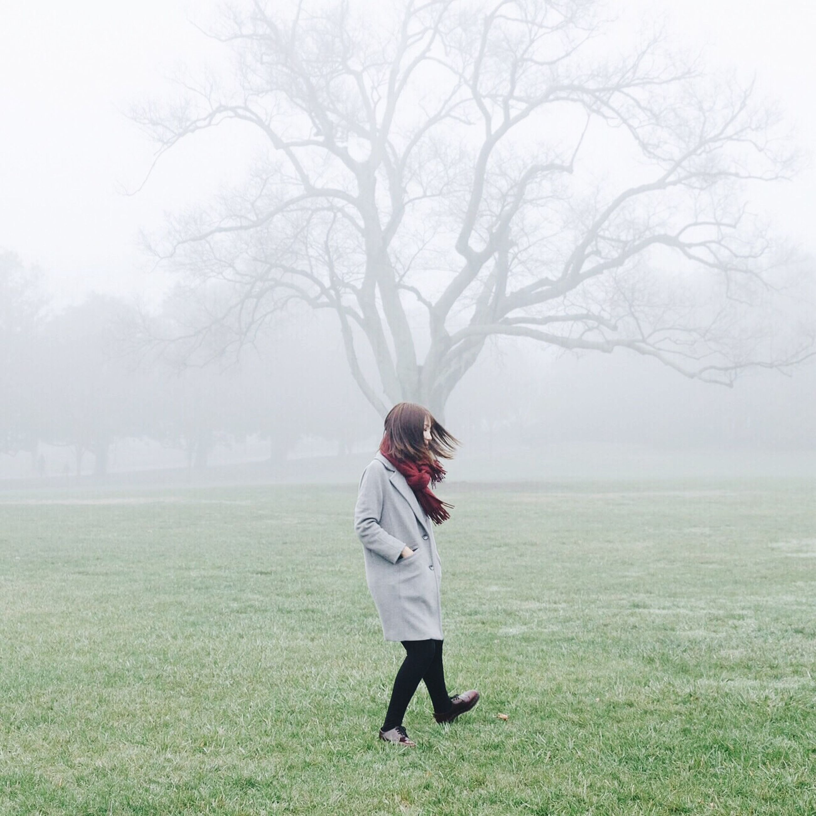 full length, tree, lifestyles, leisure activity, rear view, grass, field, casual clothing, nature, standing, tranquil scene, tranquility, beauty in nature, day, growth, walking, landscape, outdoors