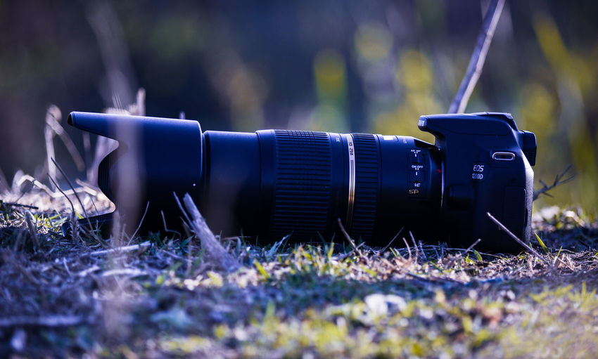it's my dear Photography Nightphotography Art Nikon Canon EyeEm Nature Lover Photo Physical Geography Sky Photoshoot Outdoors Selective Focus No People Day Outdoors Nature Grass Close-up