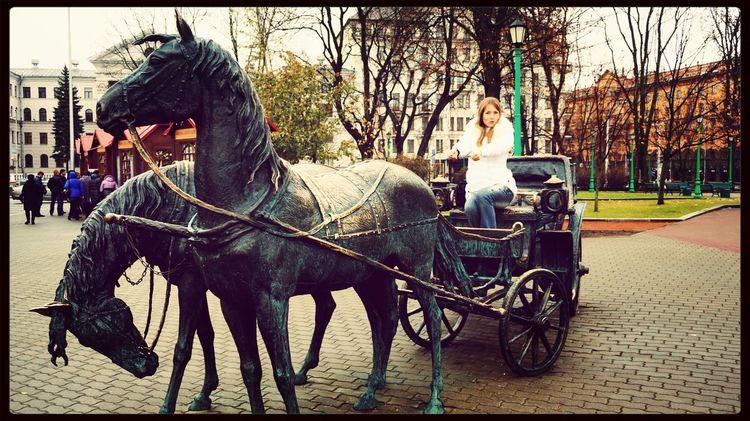 Belarus Minsk Horse The EyeEm Facebook Cover Challenge