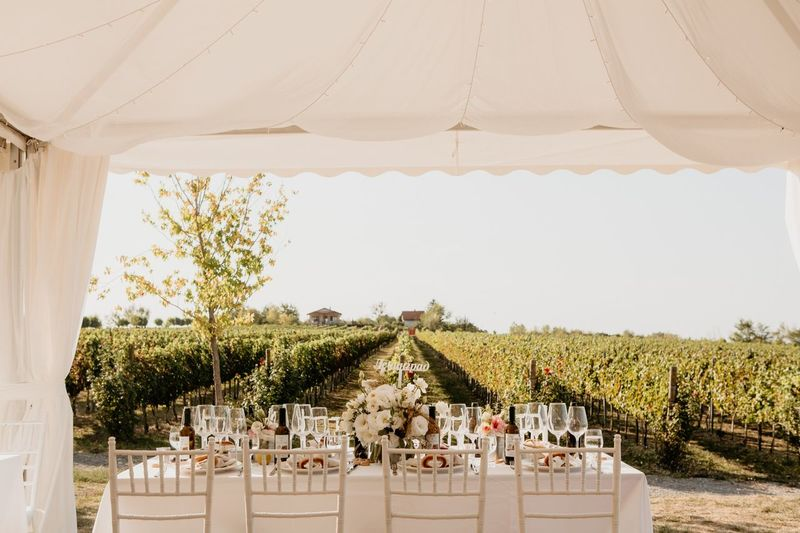 Summer winery wedding Celebration White Winery Restaurant Winery Farm Winery View Wedding Decor Wedding Decoration Winery Plant Architecture Nature Decoration Built Structure Tree Day White Color Sky Outdoors Celebration Sunlight Table No People Wedding Event