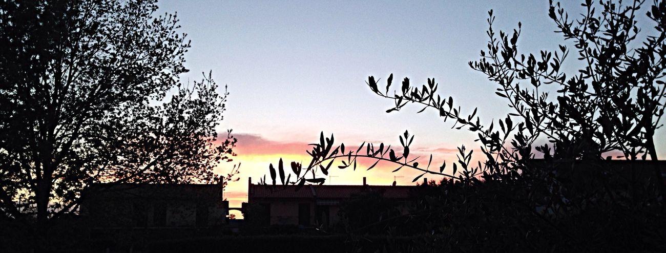 ☺️ Sunset