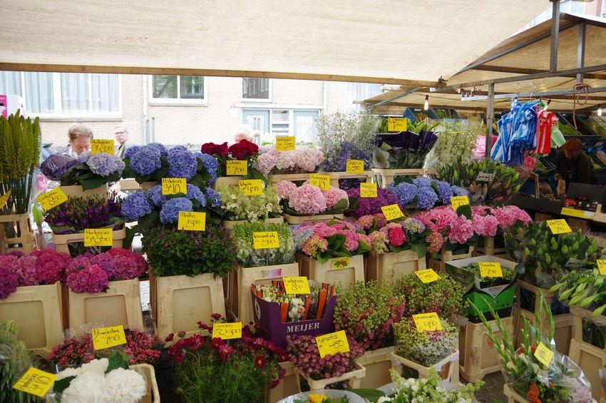 Flowers Market Stall Market Noordermarkt Amsterdam Florist