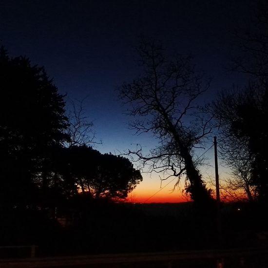 Sky Nature Tree Beauty In Nature No People Tranquility Tranquil Scene Outdoors Scenics Tuscany Nature Italy Tree Maremma Scansano Sunrise