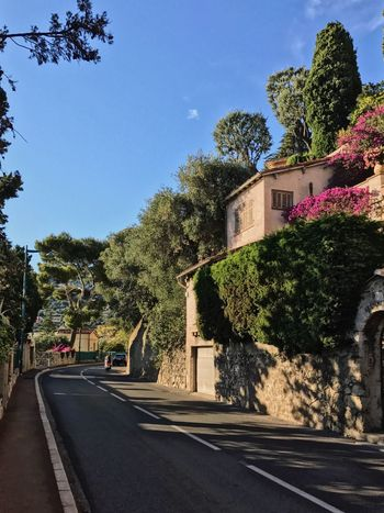 Tree Architecture Road Day Building Exterior Outdoors Street The Way Forward Clear Sky Sunlight Sky Nature Village Landscape_photography Côte D'Azur Mediterranean  French Riviera Tranquility Scenics
