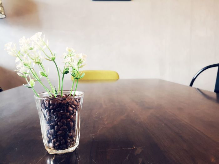 Close-up of flowers in glass with coffee beans on table