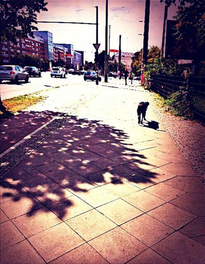 Walking Around Streetphotography