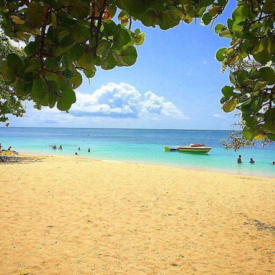 Ig_grenada PureGrenada Livefunner Uncoveryours Westindies_landscape Ig_caribbean Amazingphotohunter Andyjohnsonphotography Photooftheday Photo_storee Photo_colection_ Beach Photo_beaches All_shots