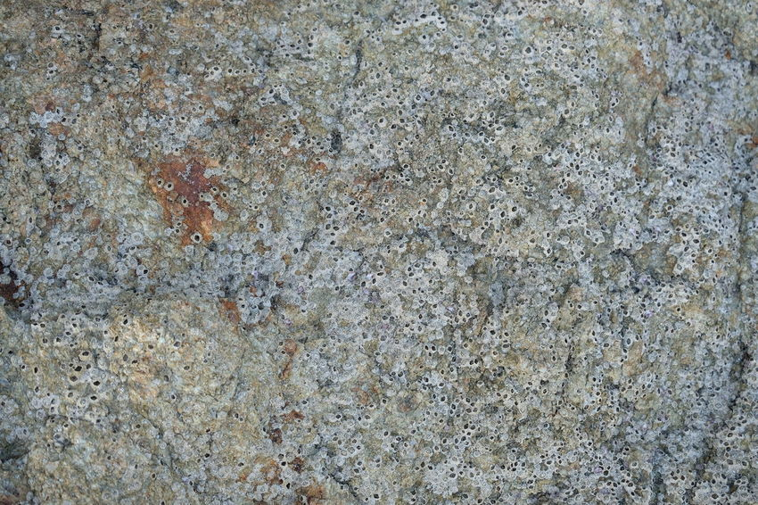 Abstract Abstract Backgrounds Architecture Backgrounds Built Structure Close-up Full Frame Granite Gray Marble Marbled Effect No People Outdoors Pattern Rock Rock - Object Rough Solid Stone - Object Stone Material Surface Level Textured  Textured Effect Tiled Floor Wall - Building Feature