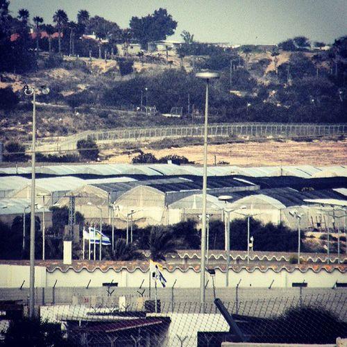 Israel Gaza Palestine Israelimoment