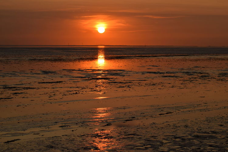 einfach nur schön Watt Beach Beauty In Nature Horizon Over Water Idyllic Landscape Nature No People Orange Color Outdoors Reflection Scenics Sea Silhouette Sky Sun Sunlight Sunset Tranquil Scene Tranquility Water Wattenmeer