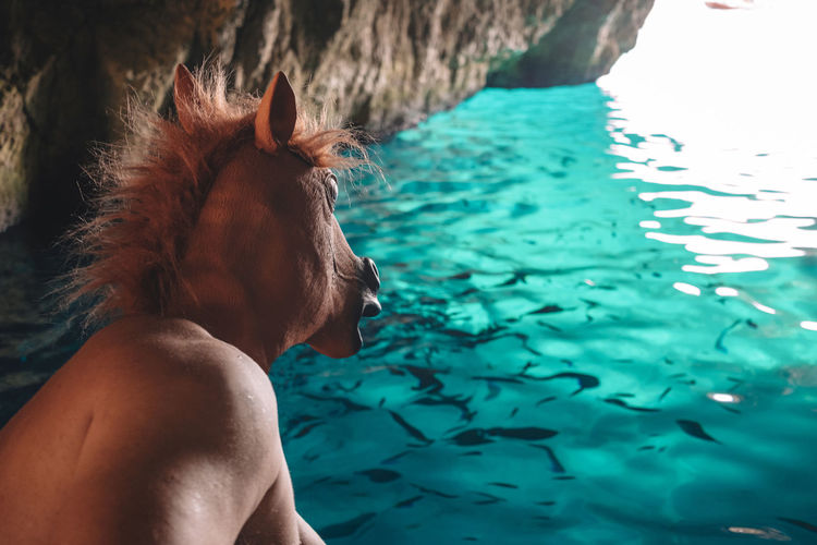 Rear view of horse man in sea