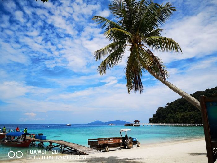 HUAWEI Photo Award: After Dark Tree Water Palm Tree Sea Beach Blue Sand Summer Tourist Resort Tropical Climate EyeEmNewHere