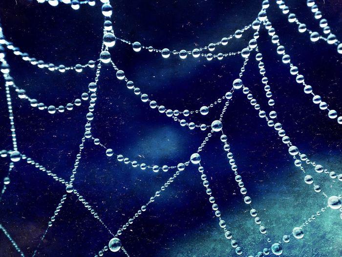 Cobweb with art effect Abstract Blue Cobweb Cobwebs Creative Decoration Design Dew Dewdrops Draped Drop Drops Hanging Hung IPhoneography Rain Shiny Silver  Silvery Spider Spun Victoria Gardner Water Web Showcase: November