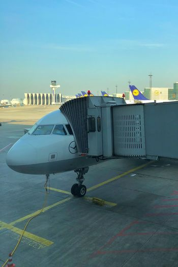 …at FRA for Lufthansa ✈️ #LH1186 to ZRH. Airport Airplane Sky Built Structure Day Architecture No People