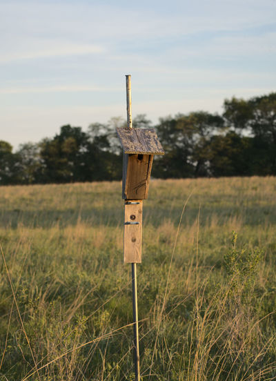 Birdhouse during golden hour in a prairie