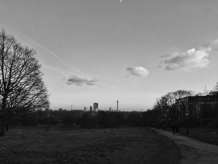Another shot of London from Primrose Hill ft. the Shard & bt tower Sky Tree Outdoors Nature Day Sunset Primrose Hill Primrosehill Blackandwhite Black And White Black & White Monochrome Photography Monochrome Monochrome _ Collection Blackandwhite Photography Black And White Photography Black&white Primrose Hill London