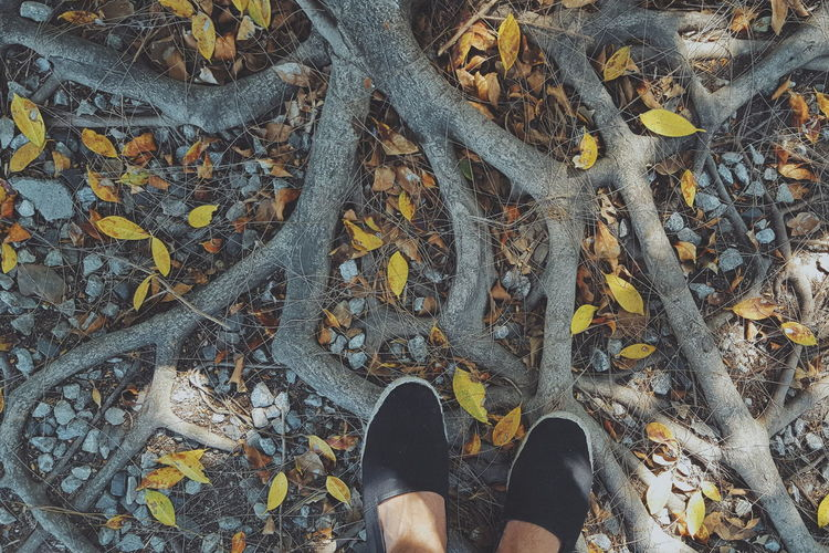 Low Section High Angle View Shoe Human Leg One Person Real People Personal Perspective Human Body Part Standing Day Directly Above Outdoors Lifestyles One Man Only Close-up Nature People Adult