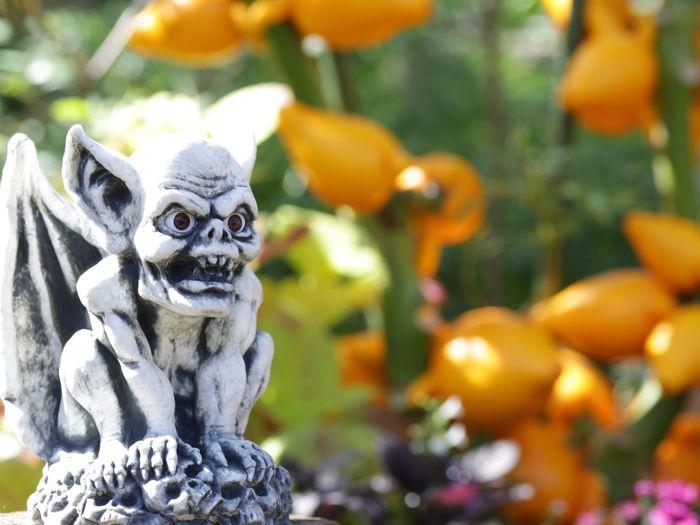 Close-Up Of Gargoyle Statue At Park