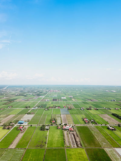 High angle view of agricultural field against clear sky